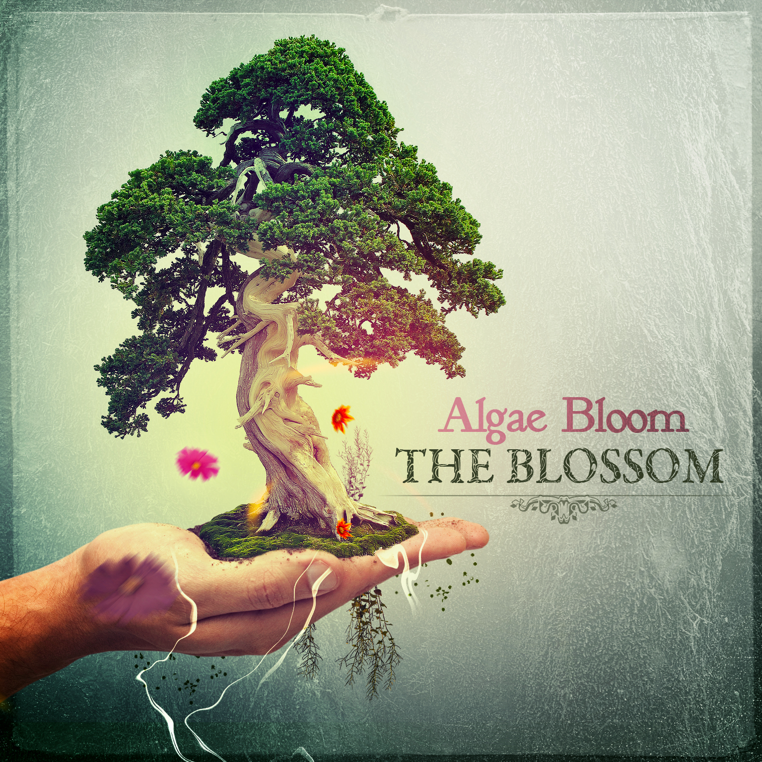 Algae Bloom - The Blossom - Sun Station Records - psytrance music label